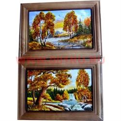 Картина из янтаря в простой темной рамке 10х14 - фото 45514