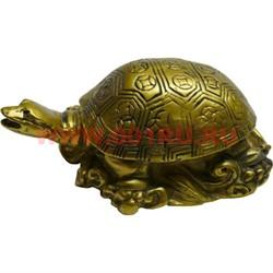 Нэцке, черепаха (KL-17) - фото 47800