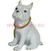 Собака «бульдог» из фарфора (KL-1222) с цепочкой 13 см высота (60 шт/кор)