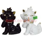 Котики со стразами (KL-1227) два цвета 12 см цена за 1 шт (72 шт/кор)
