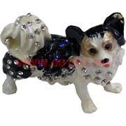 Шкатулка со стразами «Собака» цвета в ассортименте
