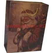 Пакет подарочный «Дед Мороз» 18х23 см (20 шт/уп)