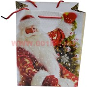 Пакет подарочный «Дед Мороз и другие рисунки» 12х15 см (20 шт/уп)