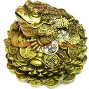 Нецке Жаба на монетах в лотосе 12см, под бронзу