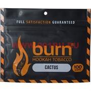 Табак для кальяна Burn 100 гр «Cactus»