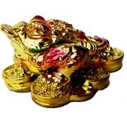 Жаба на монетах малая под золото (NS-430) из полистоуна