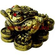 Жаба на монетах (KL-9) феншуйная