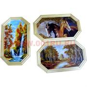Картина из янтаря в простой светлой рамке восьмигранная 14х23
