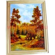 Картина из янтаря в простой светлой рамке 17х28