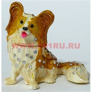 Шкатулка со стразами «Папильон» (5109) Собака