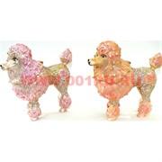 Шкатулка со стразами «Королевский пудель» 2 цвета (5091) Собака