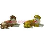 Шкатулка со стразами «Охотничья собака» 2 цвета (5107)