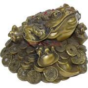 Жаба из бронзы с ногами на слитках