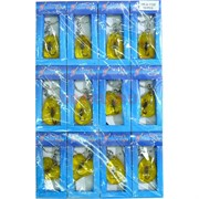 Брелок настоящий скорпион в пластмассе (KY-49) цена за 12 шт