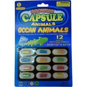 Растушки Морские животные цена за упаковку