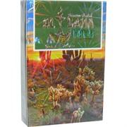 Табак для кальяна AL SAHA 50 гр «Cactus»