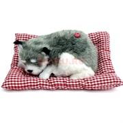 Собачка спящая на подушке со звуком