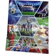 Пакет полиэтиленовый «Футбол» 36x46 см 50 шт/уп