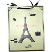 Пакет подарочный 26x32 см «Города» 4 рисунка 20 шт/уп