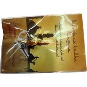 Кошельковый амулет «волшебная лампа Аладдина»