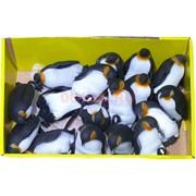 Резиновые игрушки 8 см «Пингвинчики» 24 шт/уп