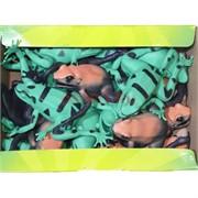 Резиновая игрушка «Лягушка» 36 шт/уп