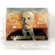 Магнит (MS-39) «Владимир Ленин» вииловый
