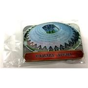 Монеты металлические (MS-130) «Самара Арена»