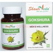 Гокшура в капсулах по 60 шт «Shanti Veda» 250 мг