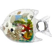 Открывашка магнит «рыба с ракушками»