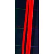 Лента неоновая красная с блоком (светодиодная двусторонняя) 5 м