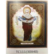 Алмазная мозаика (TC111) Икона 30x40