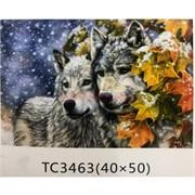 Алмазная мозаика (TC3463) Волки 40x50