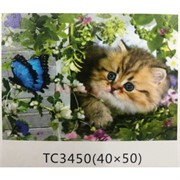 Алмазная мозаика (TC3450) Кошка 40x50