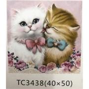 Алмазная мозаика (TC3438) Кошки 40x50