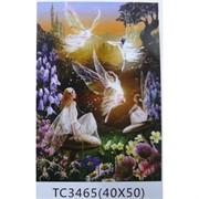 Алмазная мозаика (TC3465) Феи 40x50