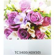 Алмазная мозаика (TC3400) Цветы 40x50