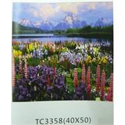 Алмазная мозаика (TC3358) Пейзаж 40x50