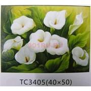 Алмазная мозаика (TC3405) Цветы 40x50