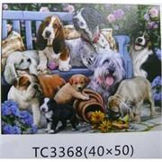 Алмазная мозаика (TC3368) Домашние животные 40x50
