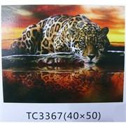 Алмазная мозаика (TC3367) Леопард 40x50