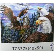 Алмазная мозаика (TC3375) Орлы 40x50