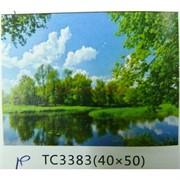 Алмазная мозаика (TC3383) Пейзаж 40x50