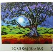 Алмазная мозаика (TC3386) Природа 40x50