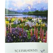Алмазная мозаика (TC3358) Поле с цветами 40x50