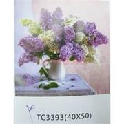 Алмазная мозаика (TC3393) Букет с цветами 40x50