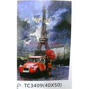 Алмазная мозаика (TC3409) Эйфелева башня 40x50