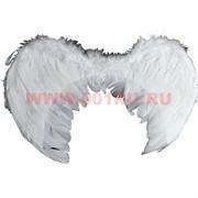 Крылья большие, цвета в ассортименте