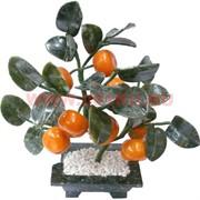 Мандариновое дерево 8 плодов