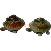 Черепашки с болтающимися ножками малая (1 размер) 400 шт/кор